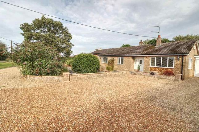 Thumbnail Semi-detached bungalow to rent in Ferry Road, Clenchwarton, King's Lynn