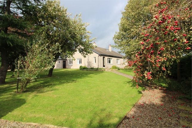 Thumbnail Detached house for sale in Winton, Kirkby Stephen, Cumbria