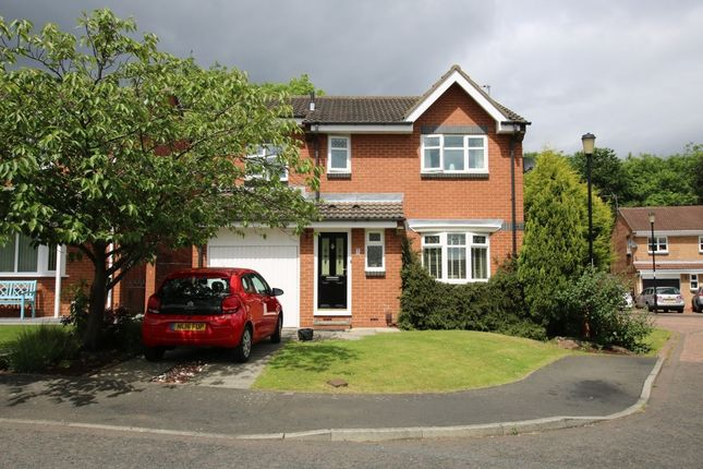 Thumbnail Detached house for sale in Redshank Close, Washington
