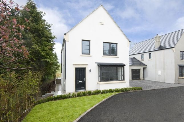 Thumbnail Detached house for sale in Gransha Road, Dundonald, Belfast