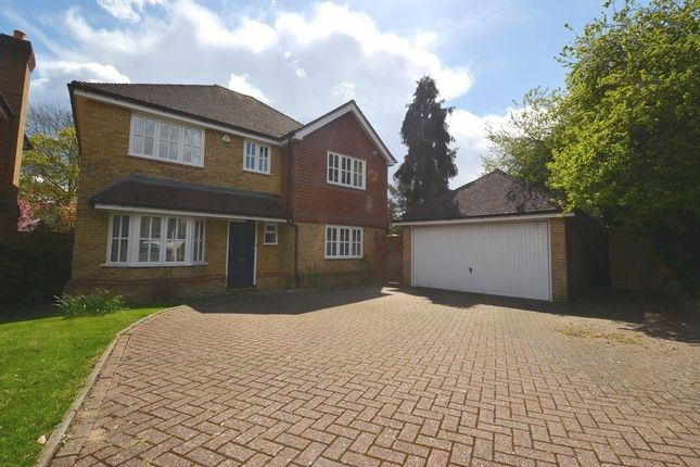 Detached house to rent in Holm Grove, Hillingdon