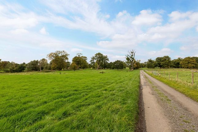 Driveway of Swallowfield Park, Swallowfield, Reading RG7