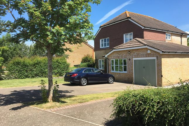 Thumbnail Detached house for sale in Fawn Rise, Henfield