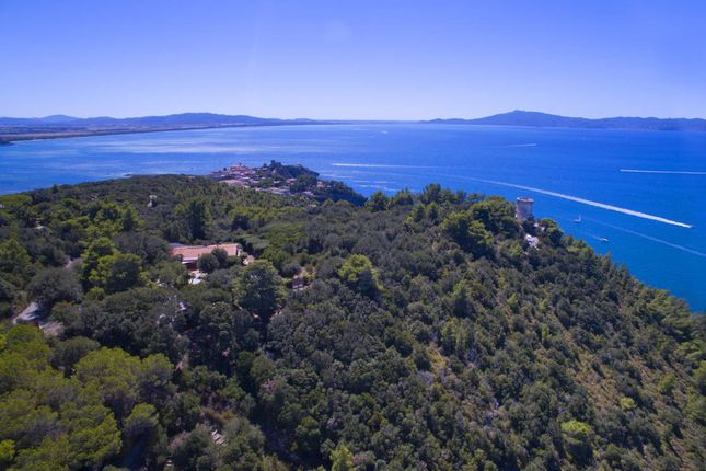 Thumbnail Villa for sale in Orbetello, Grosseto, Tuscany, Italy