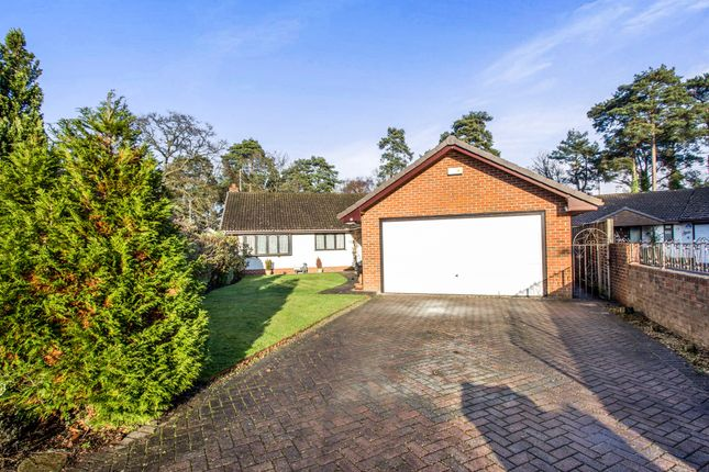 Thumbnail Detached bungalow for sale in Chander Close, Ferndown