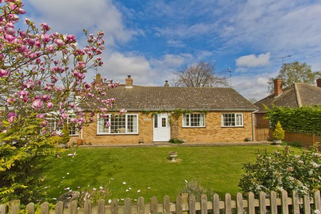 Thumbnail Detached bungalow for sale in Lynn Road, Gayton, King's Lynn