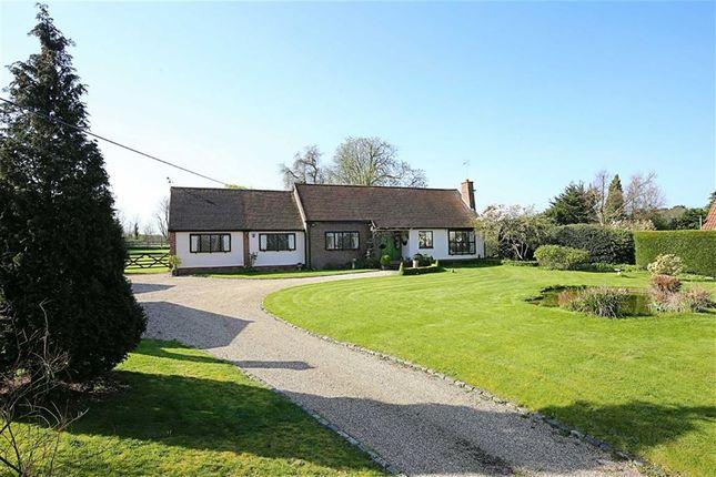Thumbnail Detached bungalow for sale in Harlow Road, Roydon, Essex
