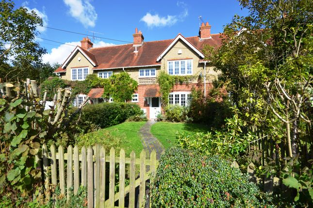 Thumbnail Cottage to rent in Broad Common Road, Hurst, Reading