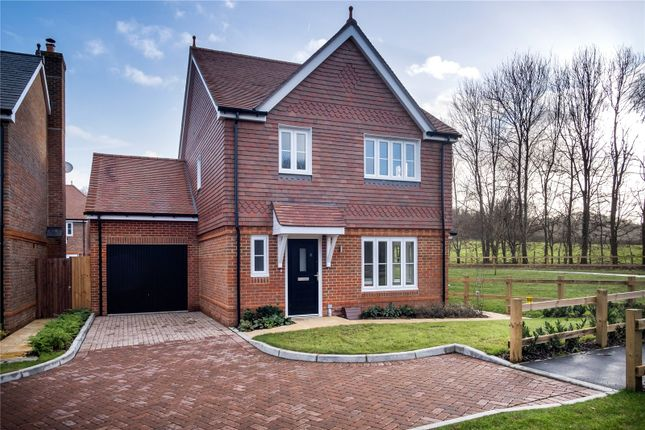 Thumbnail Detached house for sale in Halsey Meadows, Bramley, Guildford, Surrey