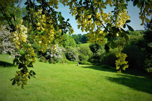 Grounds of Rhydlewis, Llandysul SA44