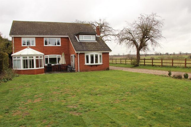 Thumbnail Detached house to rent in East Avenue, Brundall, Norwich