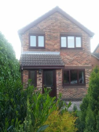 Thumbnail Detached house to rent in Avenswood Lane, Scunthorpe