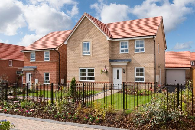 """Thumbnail Detached house for sale in """"Radleigh"""" at Barff Lane, Brayton, Selby"""