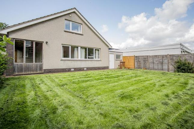 Thumbnail 5 bed detached house to rent in Dovecot Loan, Edinburgh