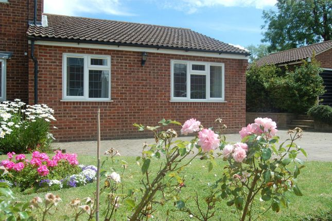 Thumbnail Semi-detached bungalow to rent in The Meadows, Breachwood Green, Hitchin