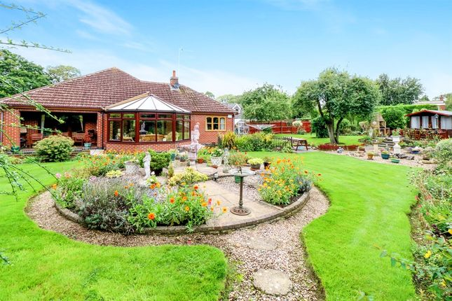 Thumbnail Detached bungalow for sale in Dalby Avenue, Bushby, Leicester