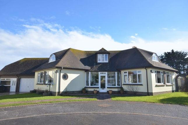 Thumbnail Property for sale in Wall Park Road, Brixham