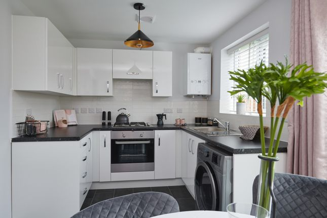 "2 bedroom semi-detached house for sale in ""Cork"" at Wheatriggs, Milfield, Wooler"