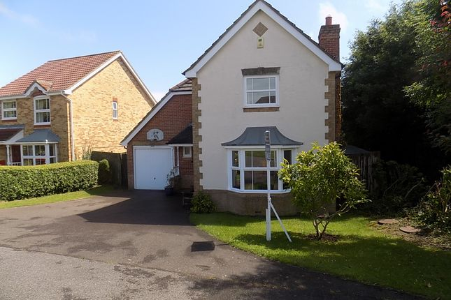 Thumbnail Detached house for sale in Glessing Road, Stone Cross, Pevensey