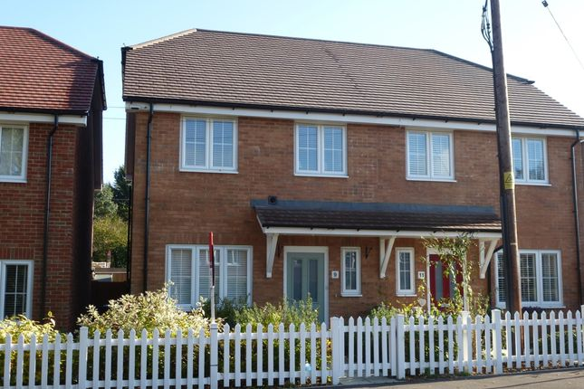 Thumbnail Semi-detached house to rent in Liphook Road, Lindford