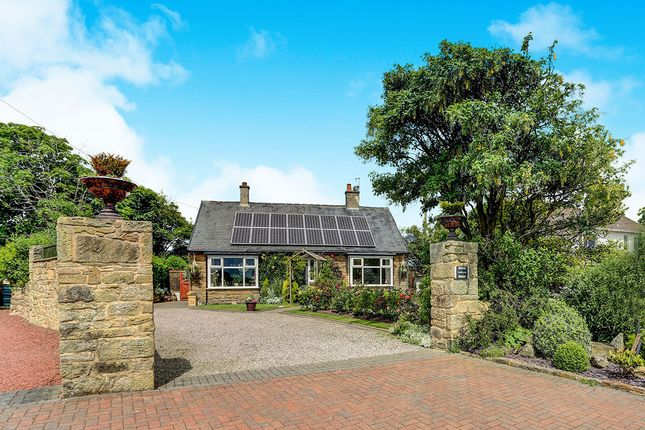Thumbnail Bungalow for sale in Cresswell, Morpeth