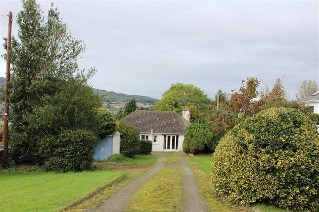"Thumbnail Bungalow for sale in ""Dunluce"", 6 Windmill Road, Newry"