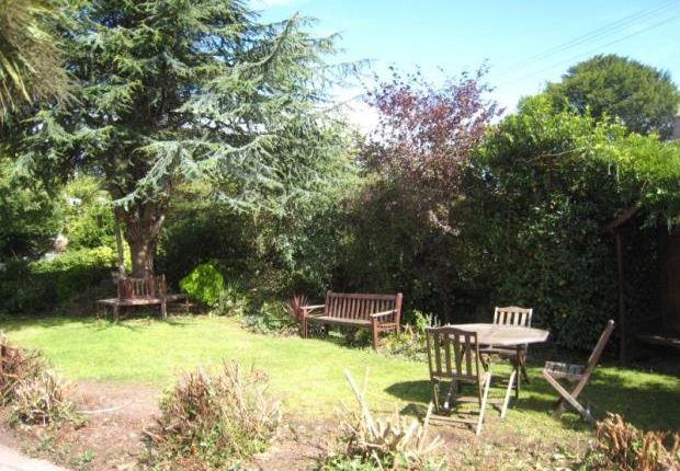 Garden of Summer Lane, Brixham, Devon TQ5