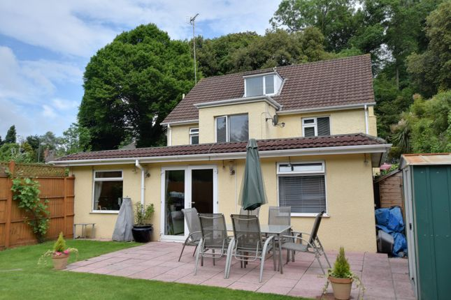 Thumbnail Detached house for sale in Newton Road, Torquay, Devon