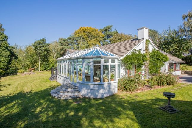 Thumbnail Detached bungalow for sale in Westerland Marldon Devon, Torquay
