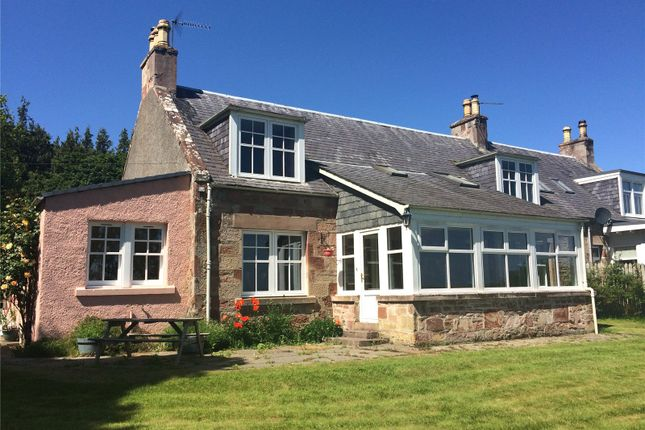 Thumbnail Semi-detached house to rent in 4 Easter Suddie Cottages, Munlochy, Highland