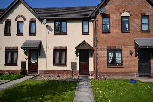 Thumbnail Terraced house to rent in St. Briavels Mews, Coedkernew, Newport