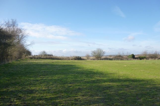 Thumbnail Farm for sale in Ivy Lane, Carlton Colville, Lowestoft