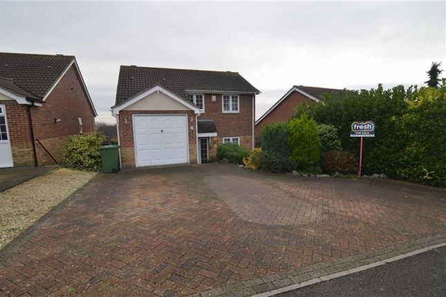 Thumbnail Detached house for sale in Seaview Avenue, Basildon, Essex