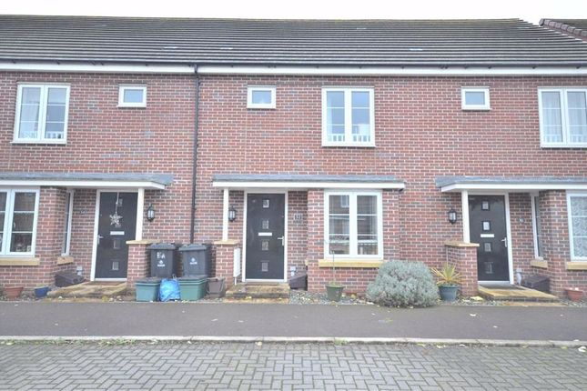 Thumbnail Terraced house to rent in Mainsail Lane, Hempsted, Gloucester