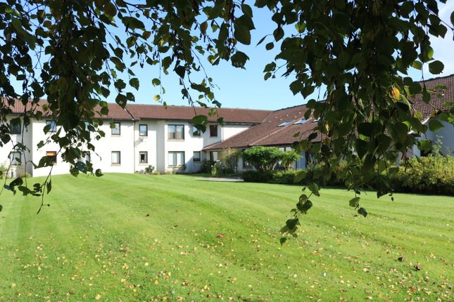 Thumbnail Flat to rent in Cluny Court, Blairgowrie