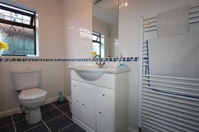 Alternative Bathroom Photograph