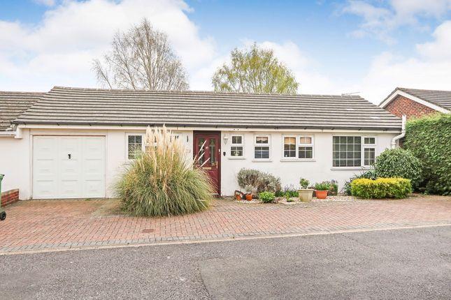 Thumbnail Semi-detached bungalow for sale in Belle Vue Road, Old Basing, Basingstoke