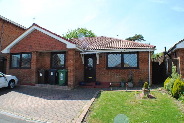 Thumbnail Detached bungalow for sale in Wentworth Close, Bexhill-On-Sea