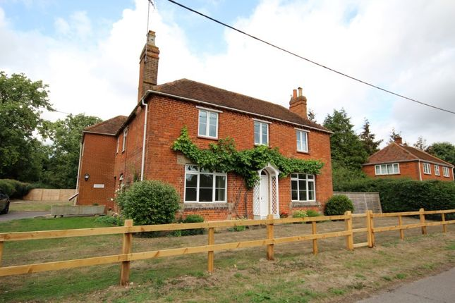 Thumbnail Detached house to rent in Haines Hill, Twyford