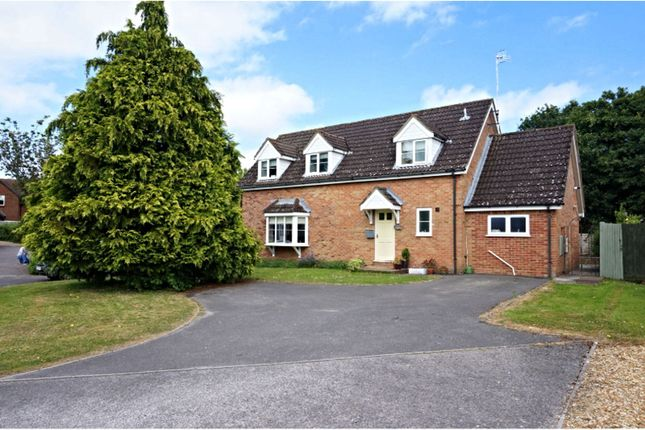 Thumbnail Detached house for sale in Langley Garden, Fordingbridge