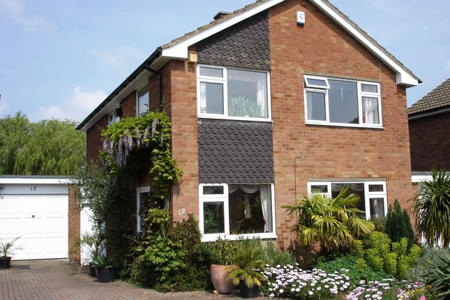 Thumbnail Detached house to rent in Brackendale Grove, Harpenden
