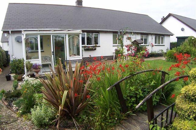 Thumbnail Detached bungalow for sale in Parc Ffos, Aberaeron, Ceredigion