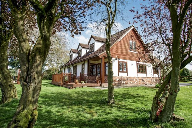Thumbnail Detached house for sale in Starcarr Lane, Brandesburton, Driffield