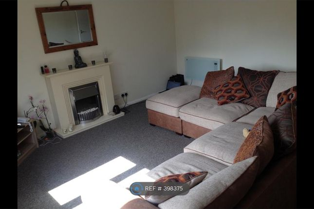 Thumbnail Flat to rent in Ingol, Preston