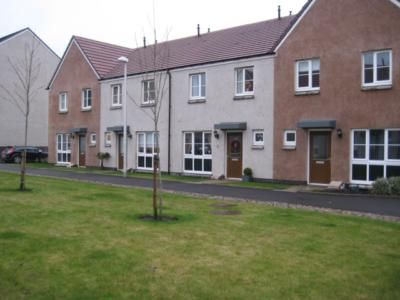 Thumbnail Terraced house to rent in Whitehills Square, Cove