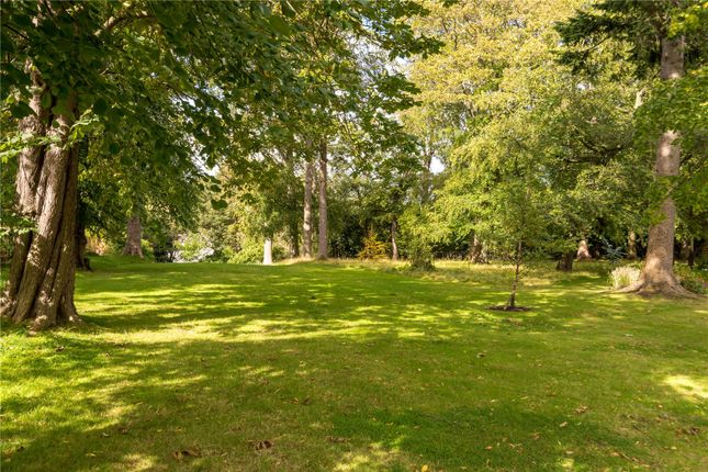Gardens of Carnbee Avenue, Edinburgh EH16