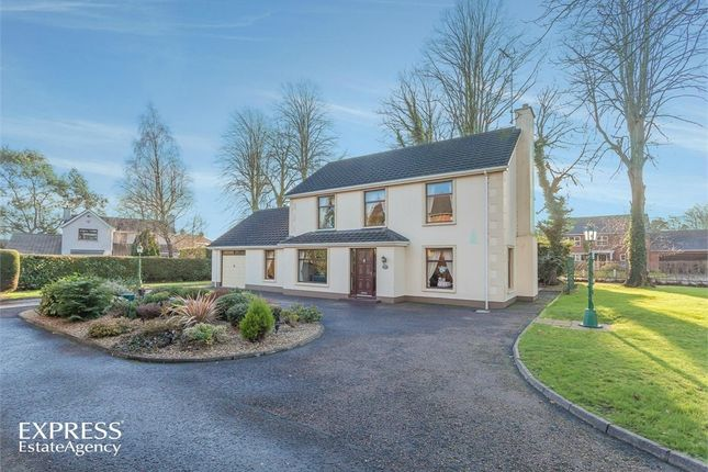 Thumbnail Detached house for sale in College Grove, Lurgan, Craigavon, County Armagh