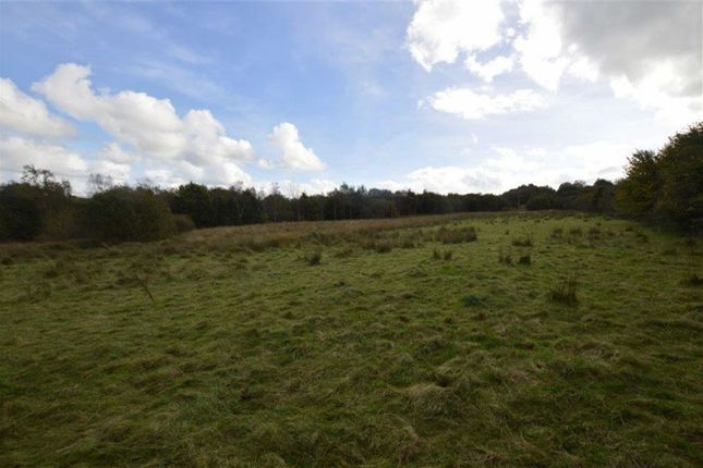 Thumbnail Farm for sale in Lot 3, Navy Hall Pastureland And Woodland, Bronant, Aberystwyth, Ceredigion