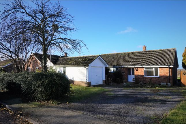 Thumbnail Detached bungalow for sale in The Street, Eyke, Woodbridge