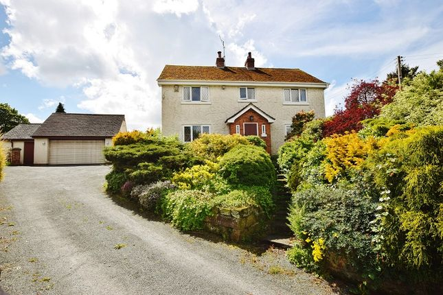 Thumbnail Detached house for sale in New Road, Dilhourne